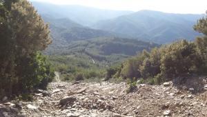 Tour enduro in Sardegna, le strisce tagliafuoco