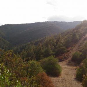Una delle salite (e discese) più impegnativa della Sardegna