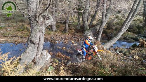Tour Enduro dalla barbagia all''ogliastra: Guado insidioso
