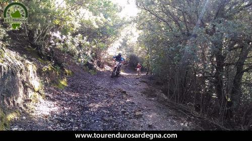 Sentiero in mezzo al bosco, fondo insidioso ricco di sassi smossi