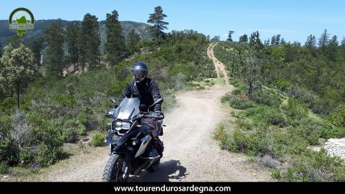 """Un bellissimo sentiero """"in cresta"""" affrontato in territorio di Orgosolo, siamo in piena Barbagia."""