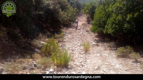 Sentiero dissestato ricco di sassi in Barbagia, enduro in Sardegna